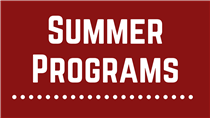 summer program icon